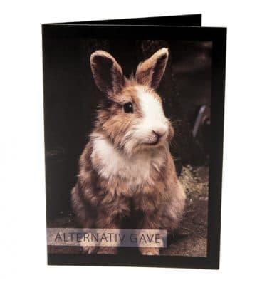Alternativ gave kaninmotiv