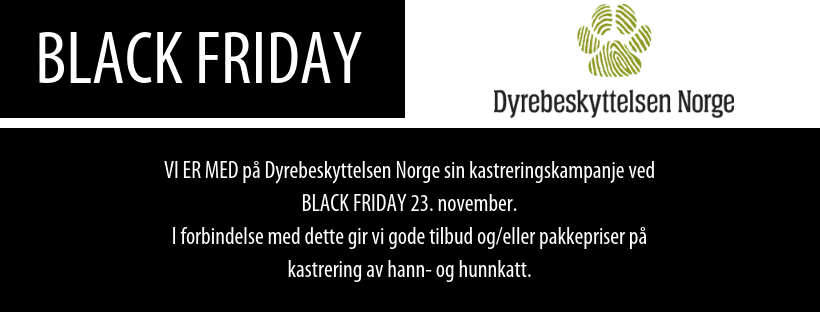 BLACK FRIDAY FB cover