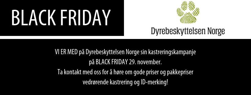 Infobilde om kastreringskampanjen til Dyrebeskyttelsen Norge på Black Friday - 29. november
