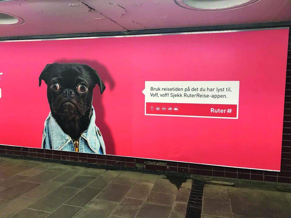 Ruter-reklame av en mops. Foto: Tommy Myran.