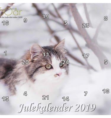 Julekalender DN 2019