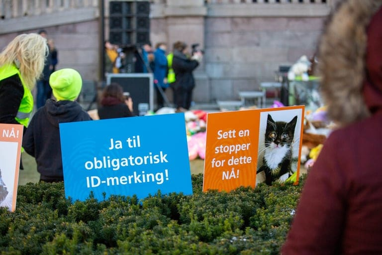 Black Friday-markering foran Stortinget 29. november 2019. Foto: Lena Kristiansen.