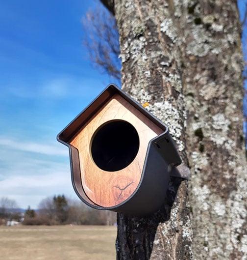 Fuglemater hus svart
