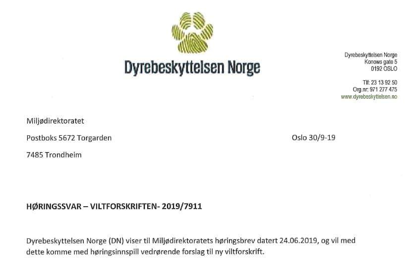 Bilde av høringssvar viltforskrift Dyrebeskyttelsen Norge