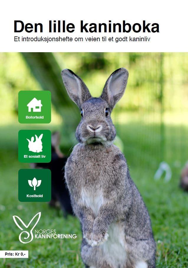Coverbilde Den lille kaninboka