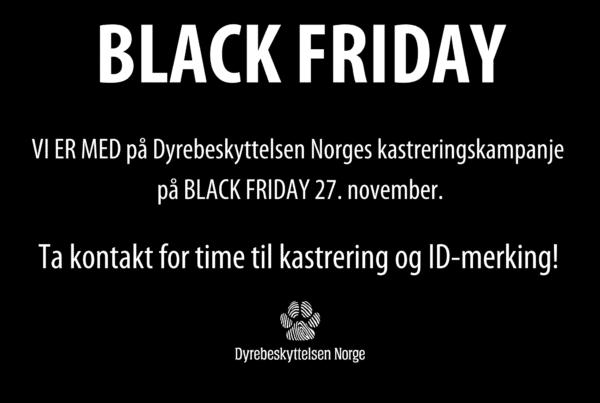 Kampanjebilde for Black Friday 2020